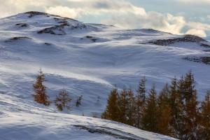 winter-5-komp